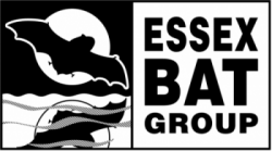 Essex Bat Group